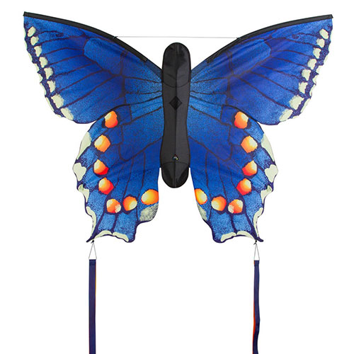 Butterfly Swallowtail Blue L