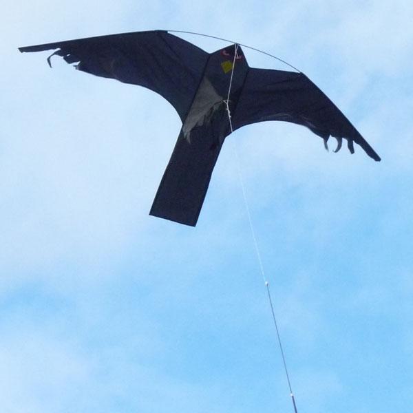 Populära Drakjohan - Fågelskrämma Blacky Hawk FY-56
