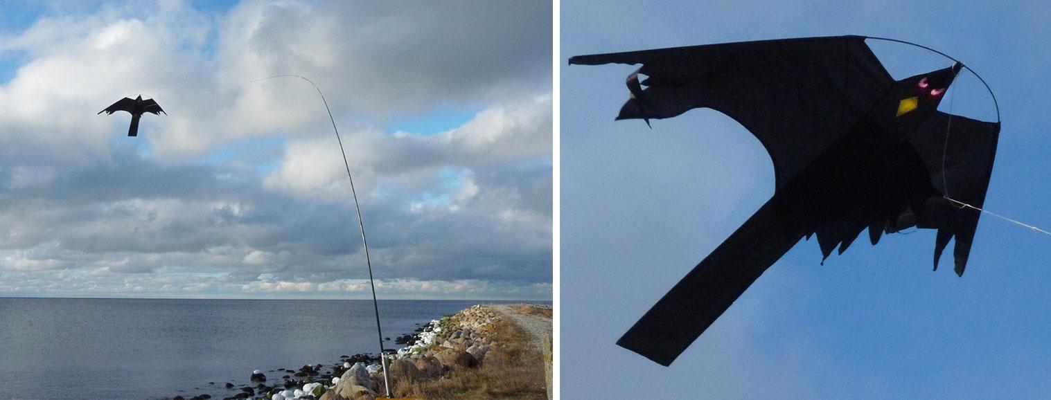 Omtalade Drakjohan - Fågelskrämma Blacky Hawk YG-45